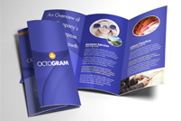 Brochures -2 sided